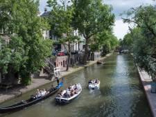 Utrecht onderaan ranglijst groene gemeenten van Nederland: maar een halve boom per inwoner