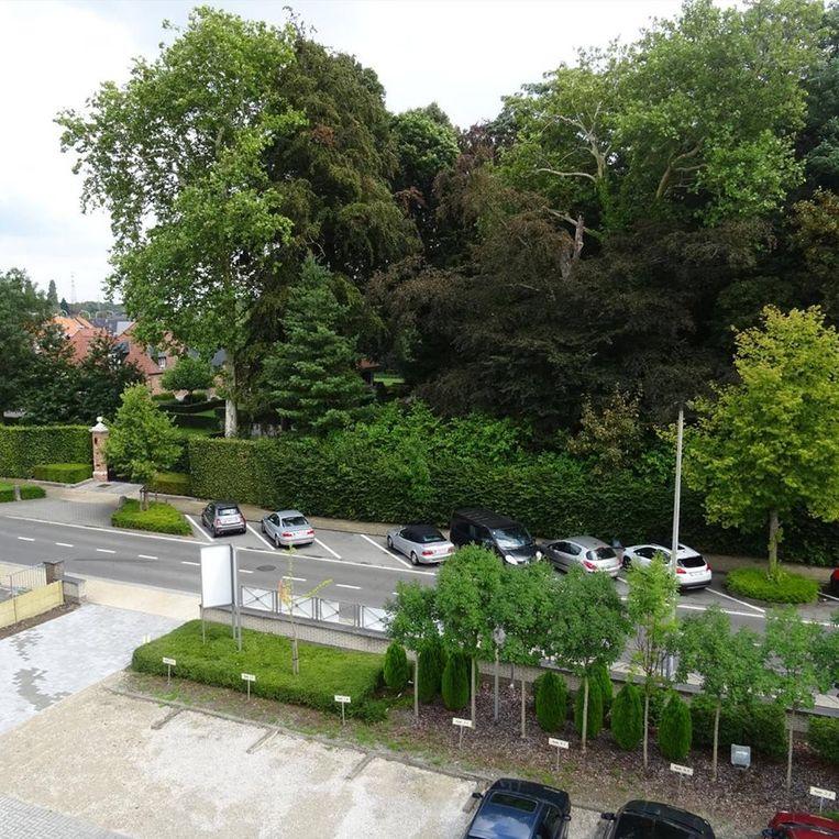 Een zicht op het Driegaaienhoekbos vanuit residentie Hof van Eden.