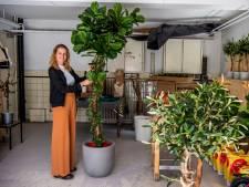Hoe Sophie Deckers van dode stammen groenblijvende bomen maakt