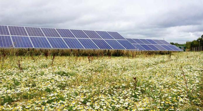 Het eerste zonnepark in de gemeente Hellendoorn wordt dit jaar aangelegd en als het aan het bedrijf Solar Proactive ligt is dat zeker niet het laatste.
