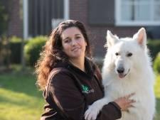 Gemeente: hondentrainster uit IJsselmuiden weigerde aanvraag