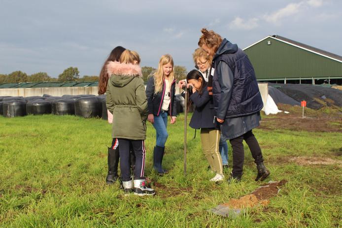 Leerlingen nemen grondmonsters op de boerderij van de Groot Wassinks.