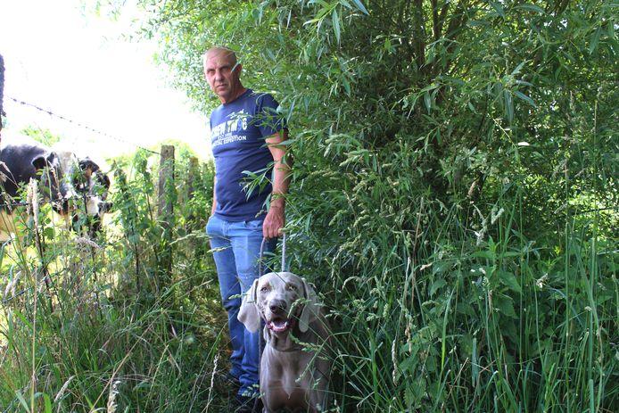 Buurtbewoner Marc De Petter bij de wandelweg die overwoekerd wordt door planten.