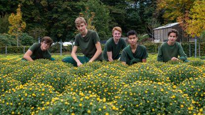 Bioteelt wordt steeds belangrijker op Tuinbouwschool Melle