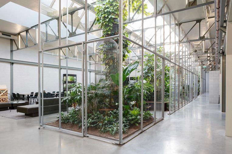 Joolz HQ, Amsterdam Beeld