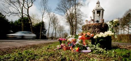 Celstraffen geëist tegen vader en zoon om dodelijke straatrace Loosdrecht<br>