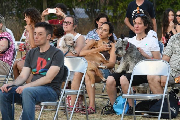 Pomi Ramirez verzorgt concerten voor honden en hun baasjes.