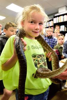 Reptielen knuffelen tussen de boeken
