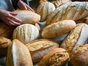Deux boulangeries ferment chaque mois en Wallonie