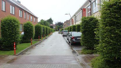 Diepenbeek gaat experimenteren met fietsstraten, woonerven en voetgangerszones