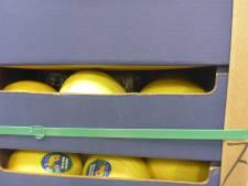 Douane doet megavangst: 2.500 kilo coke tussen de meloenen