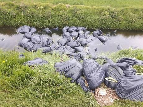 Grote dumping wietafval bij Hank: 'Milieustraat is er niets bij'