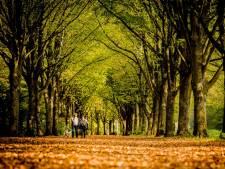 Lezing over natuurbescherming in Nederland in Stroomhuis Neerijnen