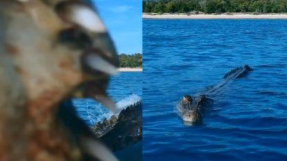 Krokodil denkt vogel te vangen, maar zet tanden in drone