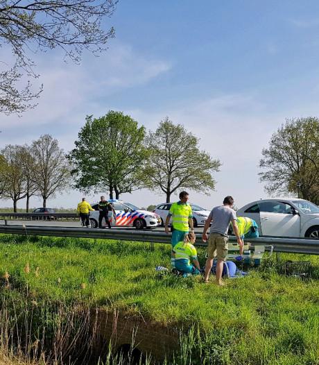 Auto's botsen op A58 bij Moergestel: vrouw gewond