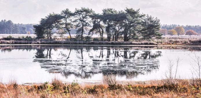 De Kraanvennen op De Groote Heide, vlakbij De Achelse Kluis.
