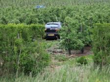 Auto vliegt in Nisse een boomgaard in. Bijrijdster is naar het ziekenhuis gebracht
