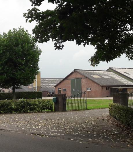 PrO wil per se dat De Rooij in Oisterwijk minder varkens gaat houden