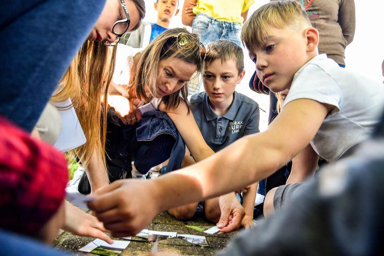 Voor wie in Sint-Truiden nog niets gepland heeft, is er heel de zomer lang alleszins opnieuw 'Jeugd, Sport en Spel'. De vakantiewerking is er dit jaar op maar liefst zes locaties in het centrum.