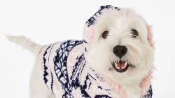 Hunkemöller brengt pyjama's voor honden uit