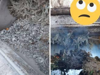 Na motorolie in vuilniszak, nu smeulende kolen bij GFT: brandje in vuilniswagen van Verko