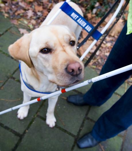 Zorgorganisaties nemen maatregelen voor betere hulp voor blinden en slechtzienden met psychische problemen