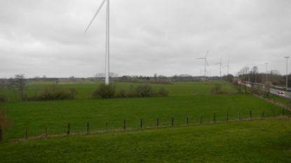 Na eerder positief advies, geeft stad nu negatief advies voor windturbine tussen Oosterlo en Stelen