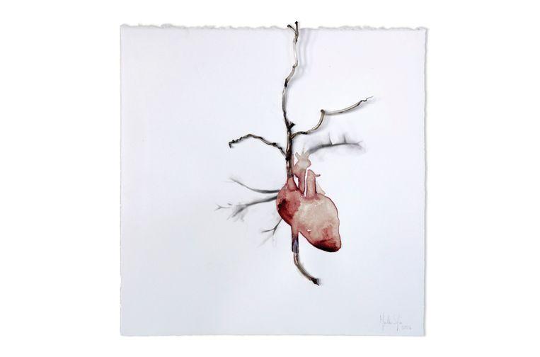 'Bleeding heart' van Sofie Muller.