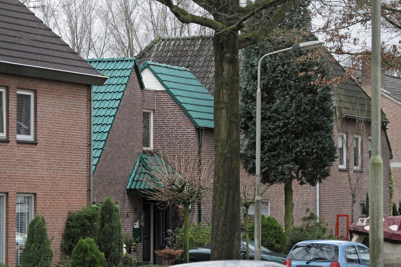 Fabulous Kurzweg voert achterhoedegevecht over groen dak Oss | Oss e.o. | bd.nl FB39