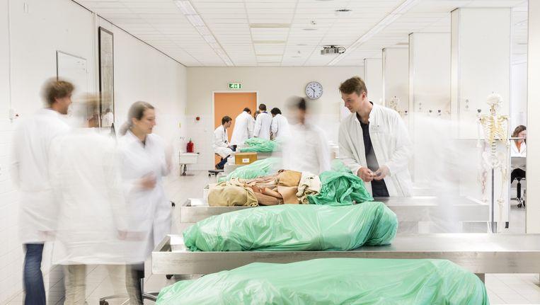 Snijpracticum voor Duitse studenten aan de Rijksuniversiteit Groningen. De lichamen zijn aan de wetenschap geschonken. Beeld Jiri Buller