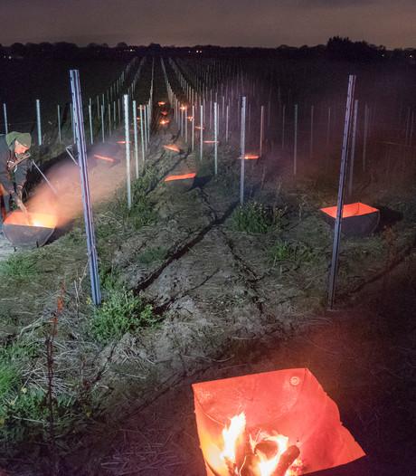Wijnramp gaat aan Groesbeek voorbij