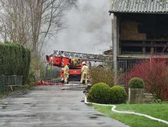 120 varkens hebben uitslaande brand in stal in Welden niet overleefd