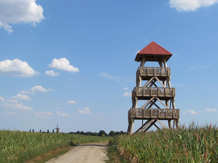De uitkijktoren op de Needse Berg, waar straks een gedicht van de Zutphense dichter Sander Grootendorst te lezen is. Het is een eerbetoon aan Willem Sluiter, maar ook een roep om de terugkeer van de Leeuwerik.