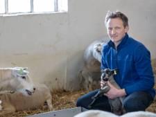 Zorgen bij boeren over opkoop boerderijen voor logistiek: 'Carola, geef duidelijkheid!'
