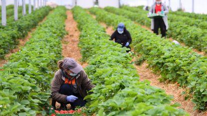 Landelijke Beweging Boerenbond roept leden op om land- en tuinbouwers te helpen