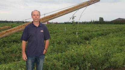 In één ruk 5 tot 10 procent van oogst verloren