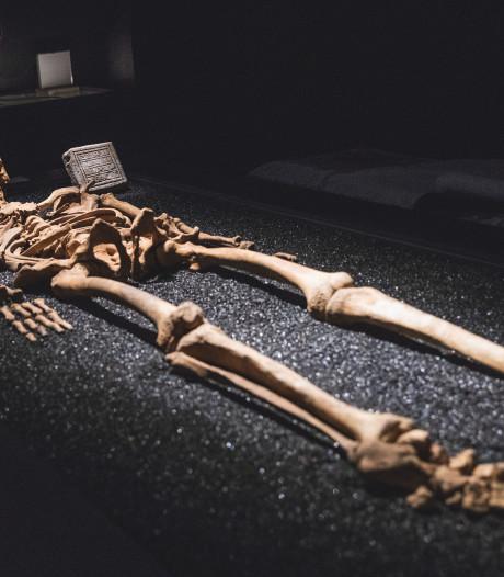 STAM gaat ondergronds: van skeletten tot bunkers, van wormen tot ratten