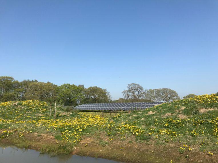Solarpark De Kwekerij in Hengelo (Gld.) Beeld Caspar Janssen