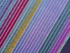 Prachtige droneshots van bloemenvelden Keukenhof