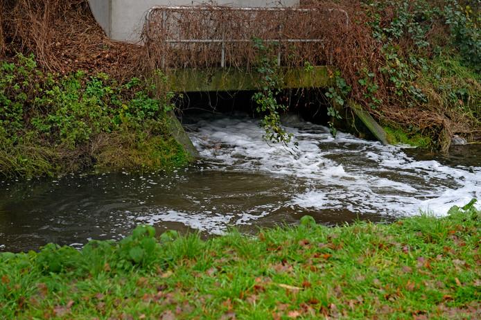 De Elsbeek is een van de beken waar met medicijnresten vervuild afvalwater in wordt geloost.