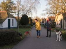 Eigenaren vakantiehuisjes willen geen gezinsdrukte op vakantiepark in Putten en proberen bestemmingsplan tegen te houden