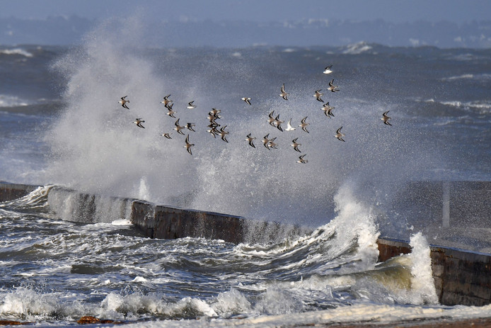 De Franse westkust werd de voorbije dagen getroffen door storm Carmen.