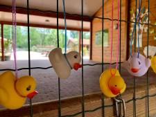 Kinderboerderij, met badeendjes, wacht met smart op opening
