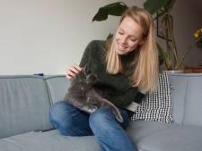 Hoe Fikkie en Tijger ons door de crisis slepen: 'Ik ben nog nooit zo blij geweest dat ik een kat heb'