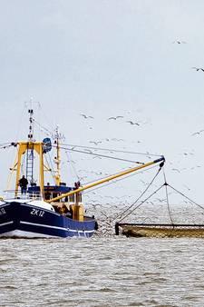Afsluiten Doggersbank kost Urker vissers geld