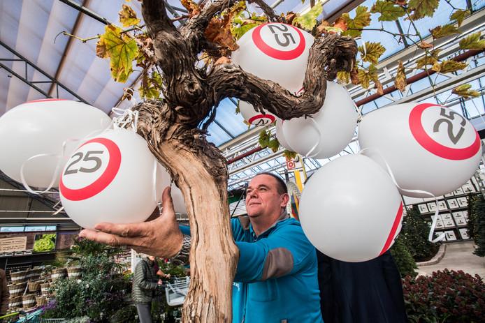 Intratuin in Presikhaaf bestaat 25 jaar. Marcel van Beukering hangt de ballonnen op.