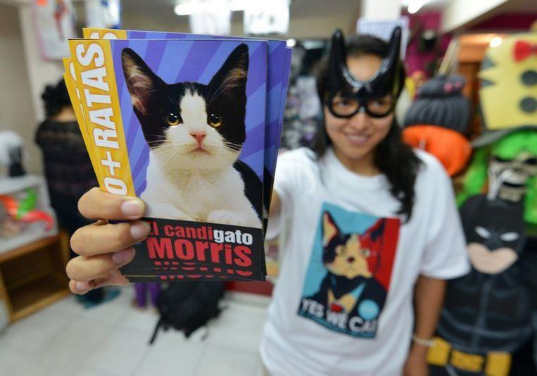 'Yes We Cat'. Stemfolder voor Morris, wellicht de aanstaande burgemeester van Xalapa. Beeld reuters