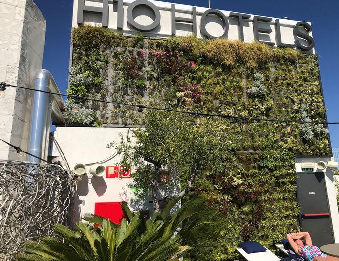 Een groene wand op het dak van een hotel, midden in Madrid.