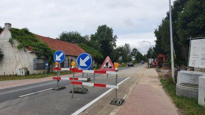 Maand lang verkeershinder op drukke gewestweg tussen Hoogstraten en Merksplas door werken