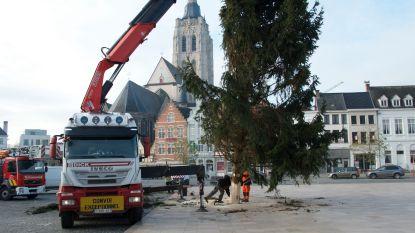 Schepen maakt zelf grapjes over mislukte kerstboom op Oudenaardse Markt en kondigt nieuwe aan voor woensdagnamiddag
